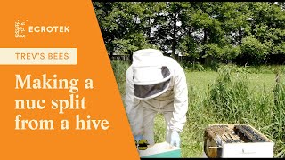 Trevs Bees - Making a Nucleus (NUC) colony (split) from a Hone…