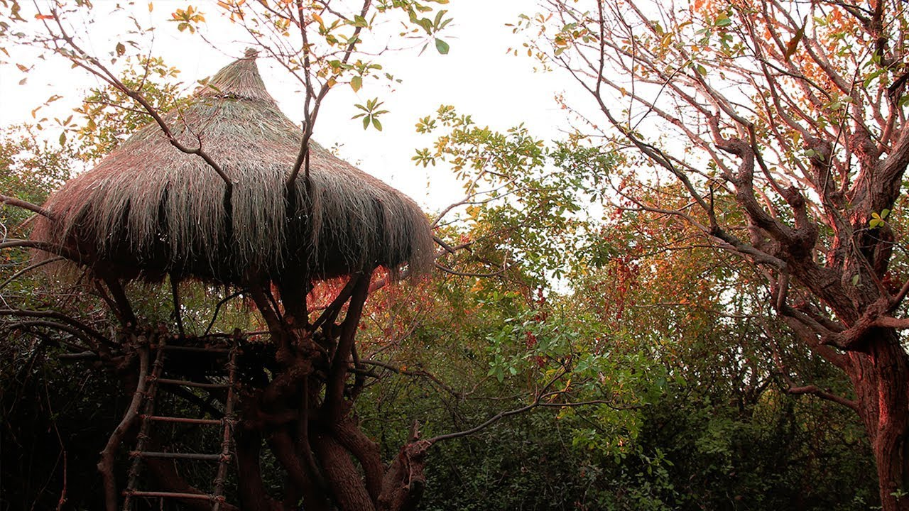 Primitive Evolution: Tonle Tree House Thatching Roof