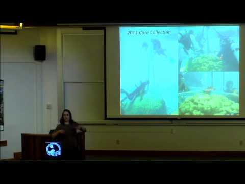 Dr. Amy Wagner presents: Corals as a proxy for ocean and climate variability