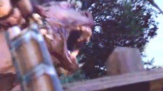 Total War: WARHAMMER — Зверолюды! (HD)  Зов зверолюдов