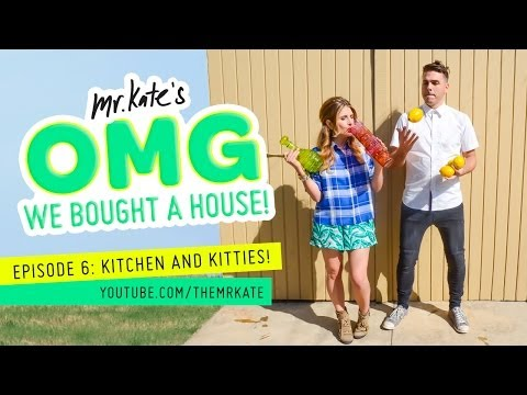 OMG We Bought A House! Episode 6: Kitchen and Kitties!