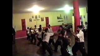 Aula de Kung fu Prof. Paulinho - Reflexos