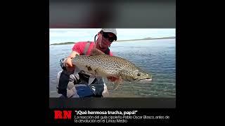 """""""¡Qué hermosa trucha, papá!"""": aventuras de pesca con mosca en el Limay Medio"""