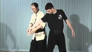 Tai Chi, Тай чи Ч9 Dan Zhi, Duo Zhi Wo 4, рычаг пальцев от захвата