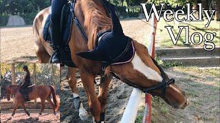 Weekly vlog al maneggio   18/22 luglio   Pernilla Iperti
