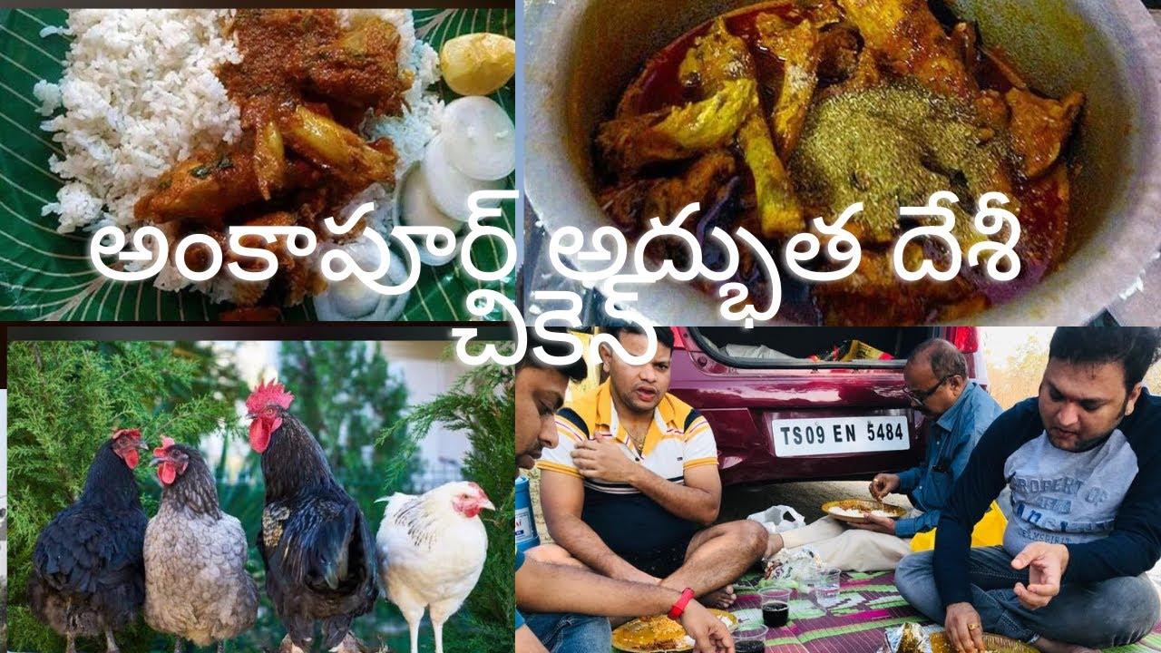 Download Ankapur Desi Chicken Dec'2020 #NihaliAarav    Telangana Style   Ankapur Chicken curry    Natukodi