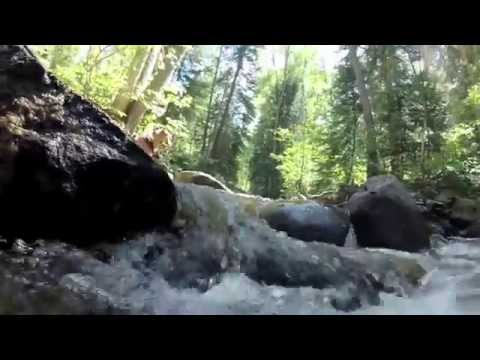 Summer Camping in Aspen, CO & Visit to Maroon Bells