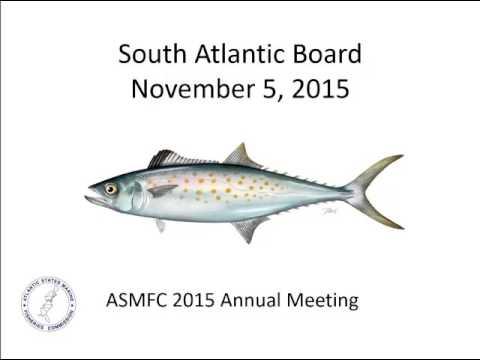 South Atlantic Board Proceedings Nov2015
