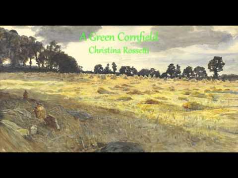 A Green Cornfield A Poem Written By Christina Rossetti