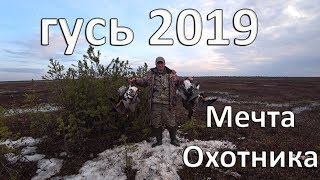 GOOSE HUNTING SPRING 2019 .THE DREAM OF THE HUNTER.