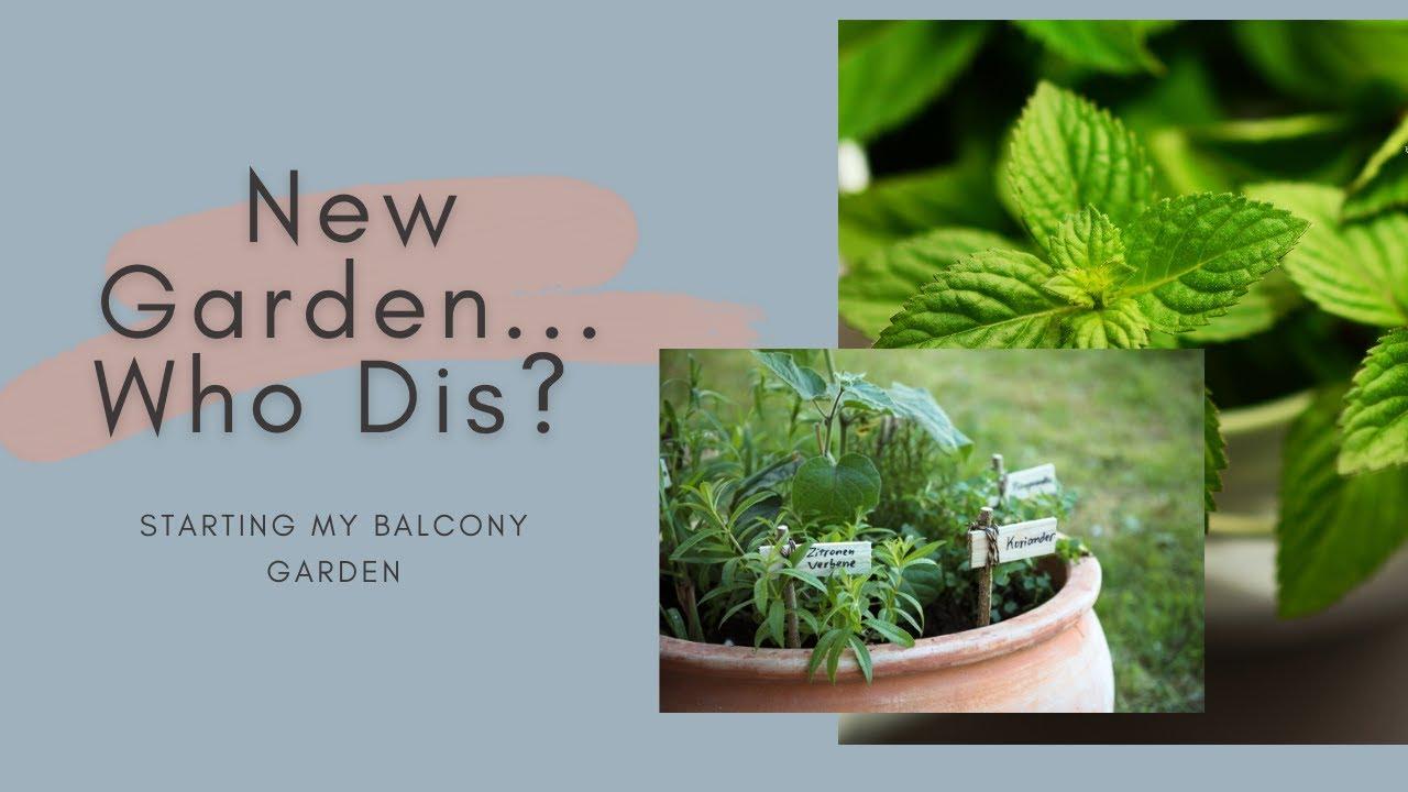 apartment balcony herb garden