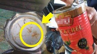 Bahaya BPOM Menyatakan 3 Merek Sarden Kaleng Terbukti Mengandung Cacing Pernah Membelinya