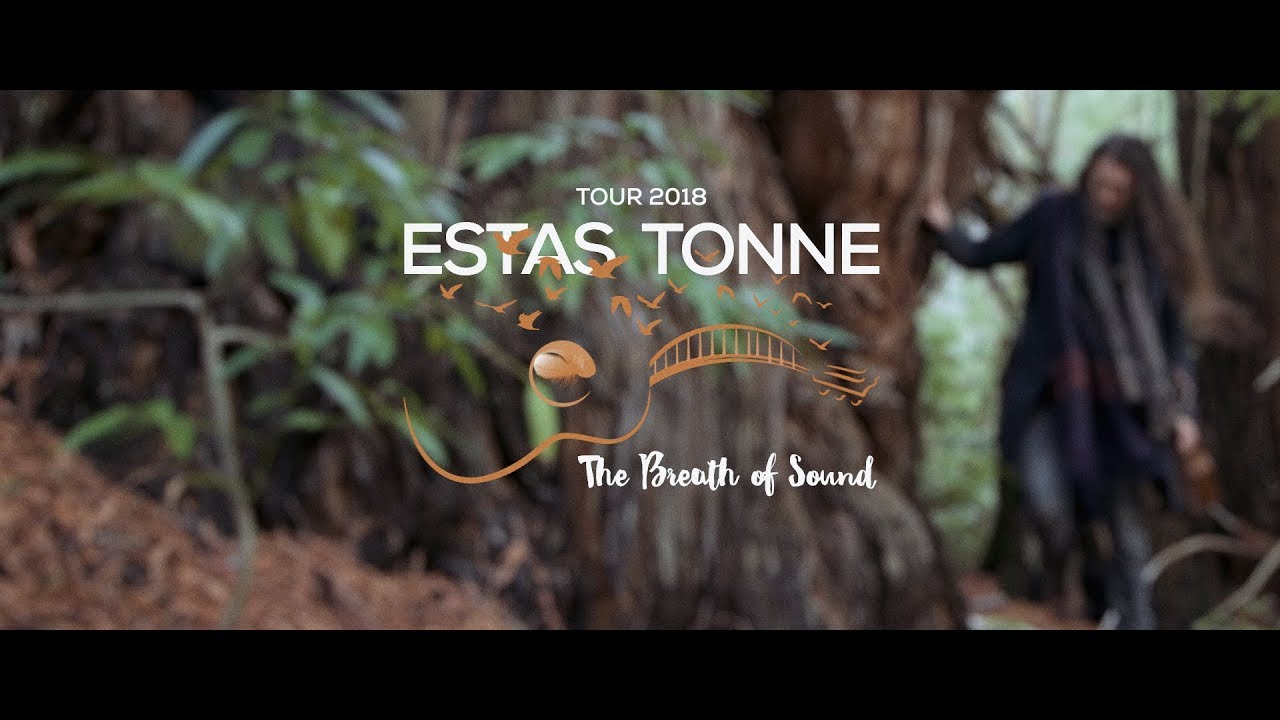 Breathing Forest || Estas Tonne in the Redwoods (2018)