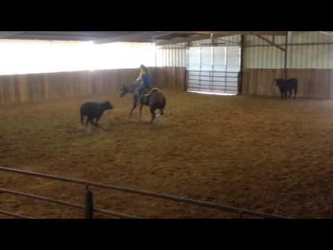 Tee- Jared Lesh Cowhorses