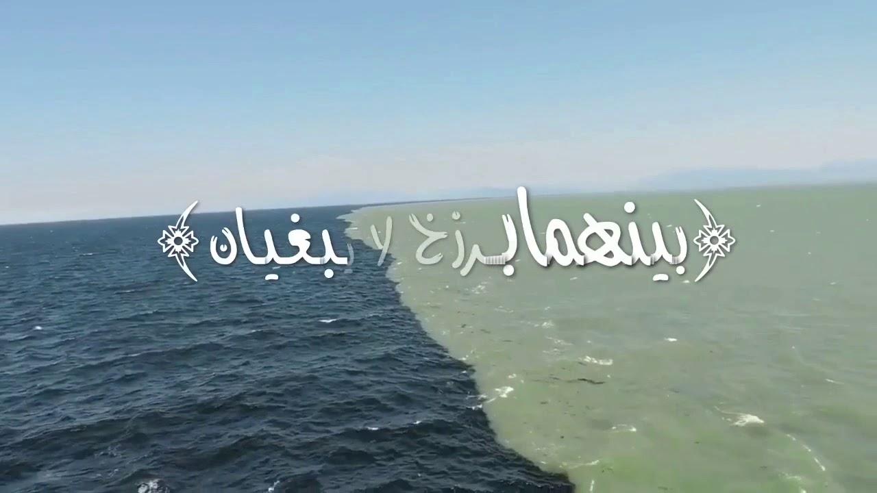 بينهما برزخ لايبغيان الحد الفاصل بين المياه العذبة من نهر فريزر والمياه المالحة من مضيق جورجيا Youtube