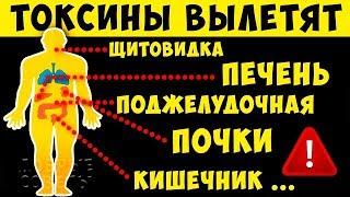 постер к видео 17 продуктов для Полной Чистки от Токсинов и Шлаков Лучше любых Лекарств