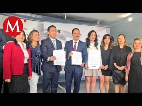 PAN presenta pruebas contra Rosario Piedra