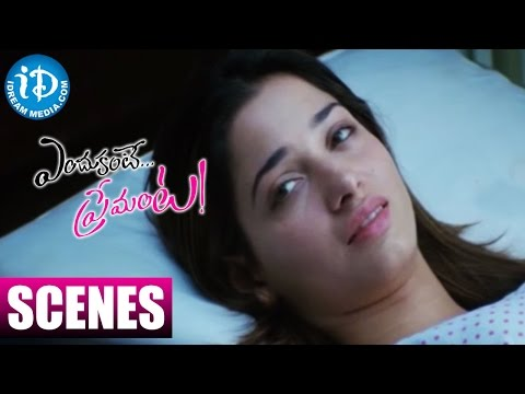 Endukante Premanta Movie Scenes - Tamannaah Fails To Recognise Ram After Waking Up From Coma