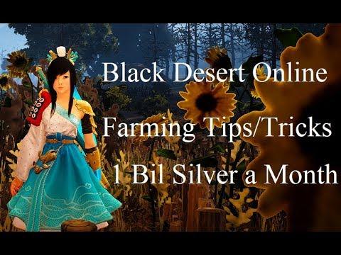 Farming For 1 Bil a Month In BDO