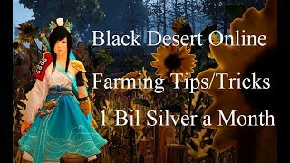 Farming For 1 Bil a Month In BDO