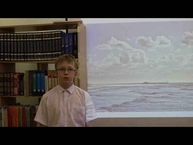 Изображение предпросмотра прочтения – ВладиславРукавишников читает произведение «Над северным морем» В.Я.Брюсова