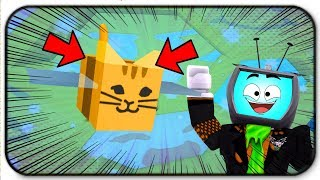 The New Cat Tabby Bee Is So Cute And Overpowered - Roblox Bee Swarm Simulator