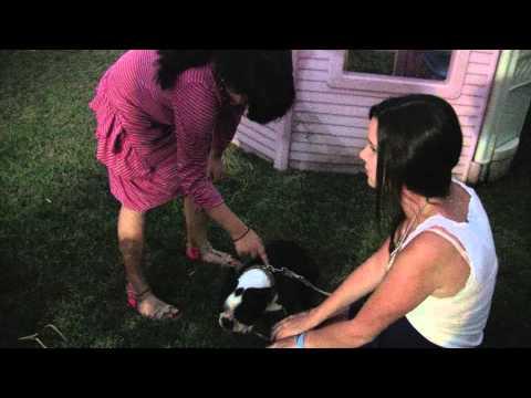 Megan Interviews Julio's Daughter .mov