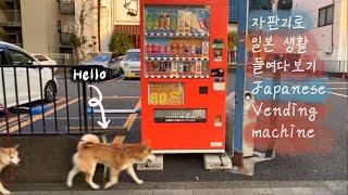 같이 일본 도쿄 교토 산책해요 | 자판기로 일본의 삶 …