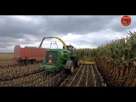 Chopping Corn Silage in Hardin County Ohio