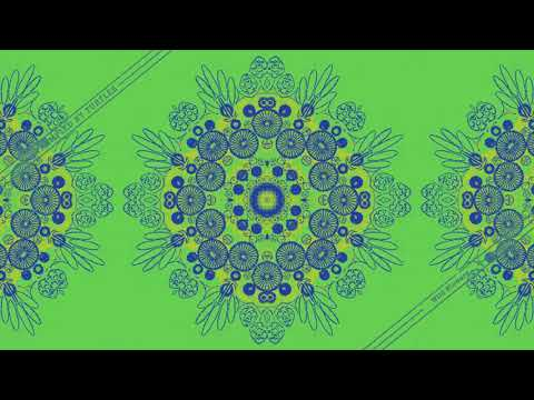 Trampled By Turtles - Wildflowers - (Tom Petty cover)