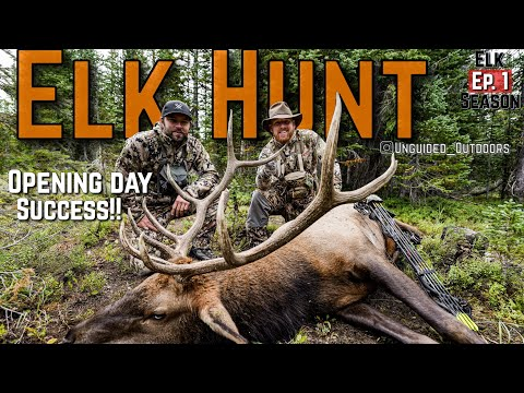Opening Day Success!! Archery Elk 2020