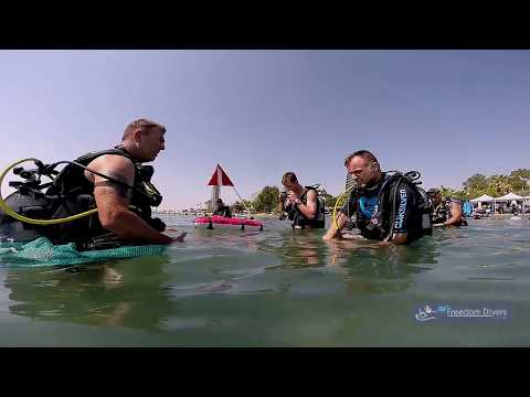 Disabled Diving Free Day In Limassol With Freedom Divers Cyprus