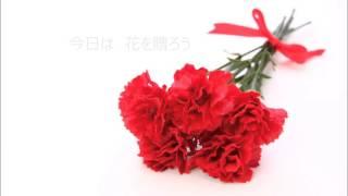 5月の花の曲【カーネーション】 母の日に贈る アコースティックユニッ...