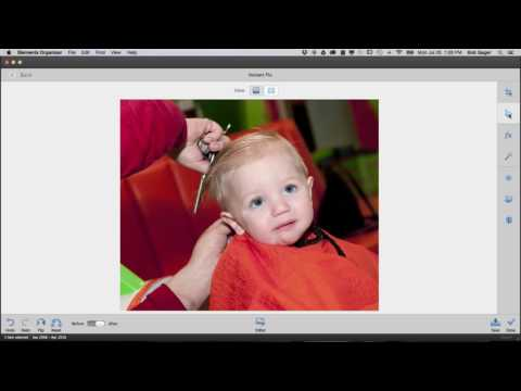 Fix Photos By the Batch with Photoshop Elements 15