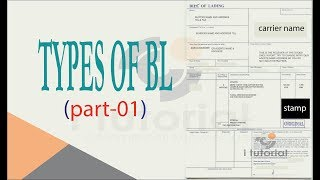 Types Of Bl Part 01 Ocean Bl Straight Bl Inland Bl To The Order Bl Shipped On Board Bl Youtube