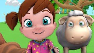 Mary miała małą owieczkę | Polskie Piosenki Dla Dzieci | Kołysanki | Mary Had A Little Lamb Rhymes