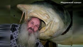 Самые большие трофеи пойманные рыбаками.Рыболовный топ 5 речных гигантов..