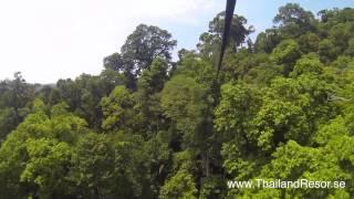 Laos Treetop The Gibbon Experience, Zipline
