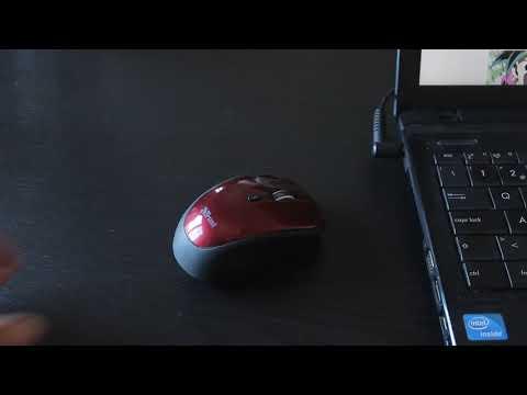 Trust Yvi Wireless Mini Mouse 19522