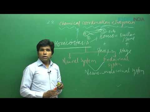Chemical Control and Integration by M. Asad Qureshi (MAQ) Sir (ETOOSINDIA.COM) thumbnail