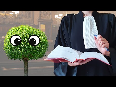 DOES NATURE HAVE RIGHTS? - 911 AVOCAT from YouTube · Duration:  10 minutes 33 seconds