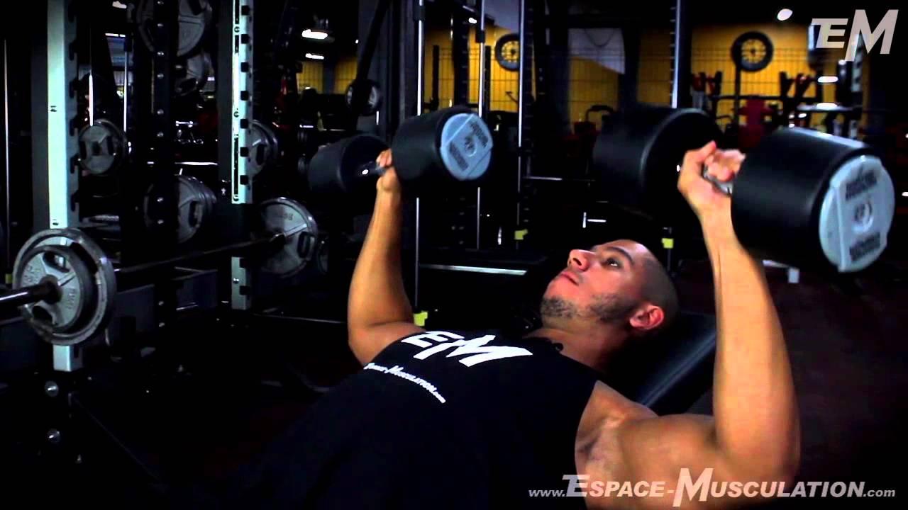 Dvelopp Inclin Aux Haltres Exercice De Musculation