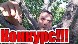 """Супер конкурс от """"Зеленой Планеты"""""""