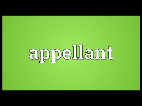 Header of appellant