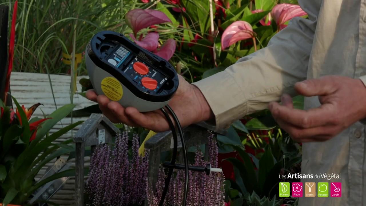 Comment Arroser Ses Plantes Son Potager Ses Jardinieres Pendant