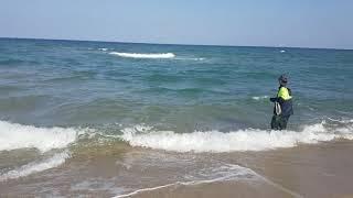 영해 대진해수욕장 송천 숭어, 연어, 전어, 학꽁치 투…