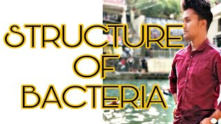 STRUCTURE OF BACTERIA/ GENERAL MICROBIOLOGY