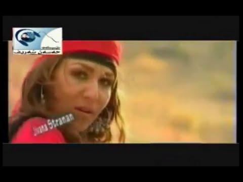 Leila Fariqi - Bêrîvanim