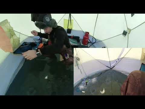Зимняя рыбалка в Кольчугино. Поздравление