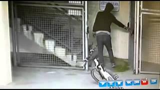 Ladro di Biciclette sorpreso a rubare